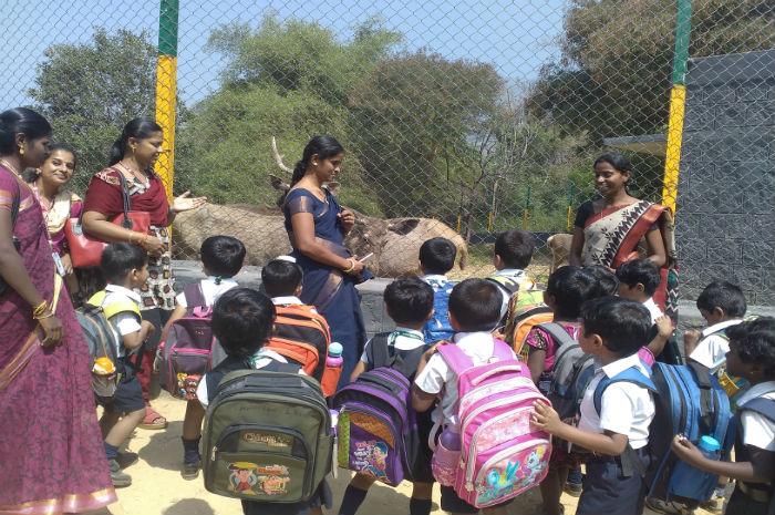 Nursery Children Visit to ZOO