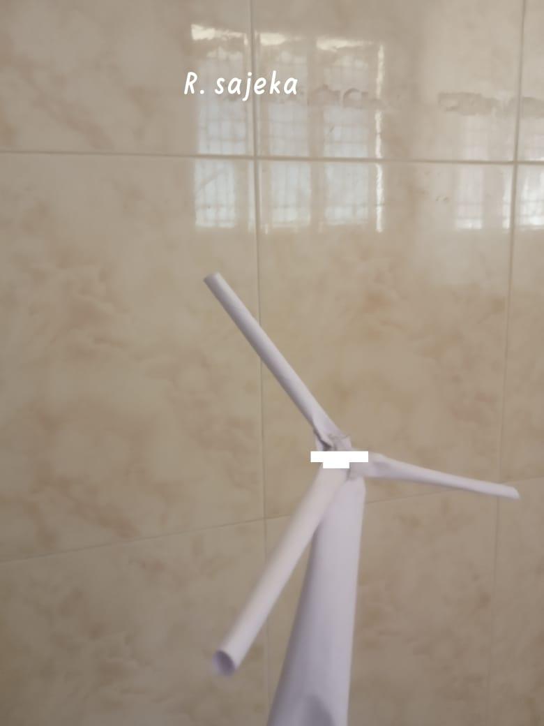 Global Wind Day Class – VIII